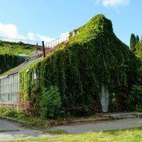 Знаменитую оранжерею на ВДНГ ожидает реконструкция